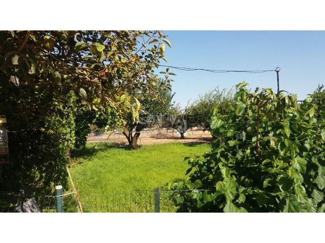 Farm Studio Pinhal Novo, Palmela