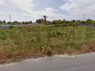 Voir Terrain, São Bernardo, Aveiro, São Bernardo à Aveiro