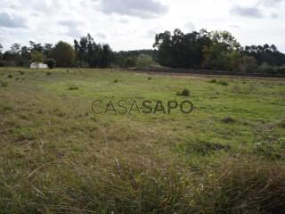 See Land, Aradas, Aveiro, Aradas in Aveiro