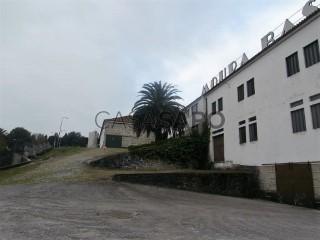 Voir Ferme, Amarante (São Gonçalo), Madalena, Cepelos e Gatão, Porto, Amarante (São Gonçalo), Madalena, Cepelos e Gatão à Amarante