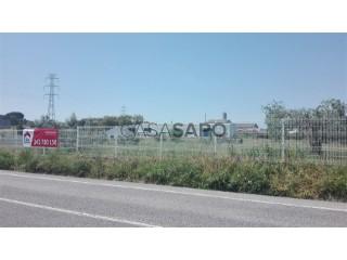 See Warehouse , Cartaxo e Vale da Pinta in Cartaxo