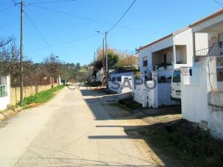 Voir Terrain, Azambuja, Lisboa à Azambuja