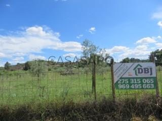 See Land, Inguias, Belmonte, Castelo Branco, Inguias in Belmonte