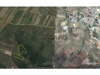 Ver Explotación agraria, Sousel, Portalegre en Sousel