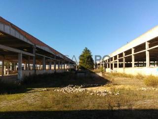 See Warehouse, Pinhal Novo, Palmela, Setúbal, Pinhal Novo in Palmela