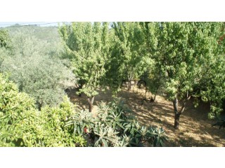 See Land, Vale (Belmonte), Belmonte e Colmeal da Torre, Castelo Branco, Belmonte e Colmeal da Torre in Belmonte