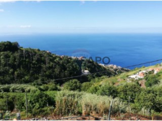 Ver Terreno , Fajã da Ovelha em Calheta (Madeira)