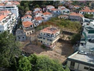 Ver Casa Estudio, Imaculado Coração Maria, Funchal, Madeira, Imaculado Coração Maria en Funchal