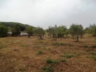 Voir Corps de ferme de l'Alentejo 3 Pièces, Santiago do Cacém, S.Cruz e S.Bartolomeu da Serra à Santiago do Cacém