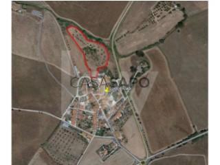 See Farm, Panoias e Conceição, Ourique, Beja, Panoias e Conceição in Ourique