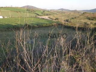 See Farm, Igreja Nova e Cheleiros, Mafra, Lisboa, Igreja Nova e Cheleiros in Mafra