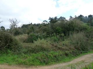 Ver Terreno Rústico, Ericeira , Mafra, Lisboa, Ericeira em Mafra