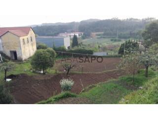 See Farm, Ossela, Oliveira de Azeméis, Aveiro, Ossela in Oliveira de Azeméis
