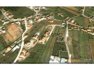 Voir Terrain Urbain, Ataija de Baixo (Aljubarrota (São Vicente)), Alcobaça, Leiria, Aljubarrota à Alcobaça