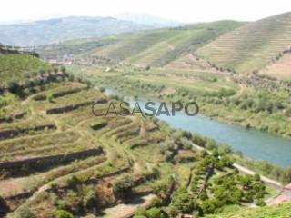 See Agricultural property, Peso da Régua e Godim, Vila Real, Peso da Régua e Godim in Peso da Régua