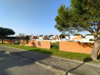 See Land, Muranzel, Torreira, Murtosa, Aveiro, Torreira in Murtosa