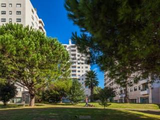 Ver Apartamento T3+1 com garagem, Ramalde no Porto