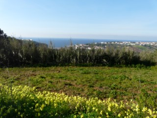 Ver Terreno Vista mar, Santo Isidoro, Mafra, Lisboa, Santo Isidoro em Mafra