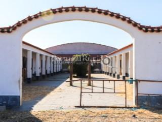 Voir Corps de ferme de l'Alentejo 4 Pièces à Viana do Alentejo