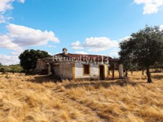 See Farm 1 Bedroom, Espírito Santo, Nossa Senhora da Graça e São Simão in Nisa