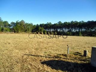 Ver Quinta Agrícola T5+1 Com garagem, Praia da Tocha, Cantanhede, Coimbra, Tocha em Cantanhede