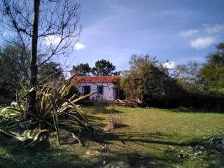 Ver Terreno , Cercal em Santiago do Cacém