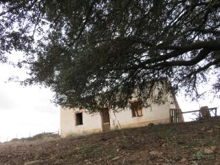 Voir Corps de ferme de l'Alentejo Studio, Almodôvar e Graça dos Padrões, Beja, Almodôvar e Graça dos Padrões à Almodôvar