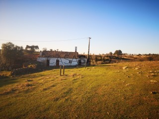 Voir Corps de ferme de l'Alentejo 3 Pièces, Santa Clara-a-Nova e Gomes Aires, Almodôvar, Beja, Santa Clara-a-Nova e Gomes Aires à Almodôvar