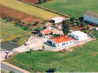 Voir Corps de ferme de l'Alentejo 4 Pièces, Beja (Salvador e Santa Maria da Feira), Beja (Salvador e Santa Maria da Feira) à Beja