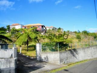 Voir Ferme rurale 4 Pièces, São Jorge, Santana, Madeira, São Jorge à Santana