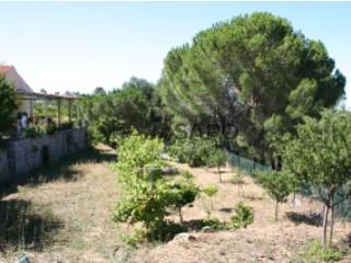 Ver Finca 2 habitaciones, Caldas de Monchique, Faro en Monchique