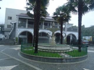 Ver Moradia T5, Lama, Barcelos, Braga, Lama em Barcelos