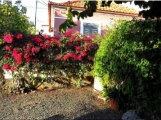 See Chalet 3 Bedrooms, Estreito da Calheta, Calheta (Madeira), Estreito da Calheta in Calheta (Madeira)