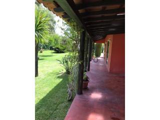 Voir Maison 6 Pièces, Pontével, Cartaxo, Santarém, Pontével à Cartaxo