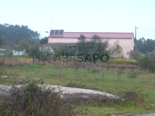 See Farm Studio, Cunheira, Alter do Chão, Portalegre, Cunheira in Alter do Chão