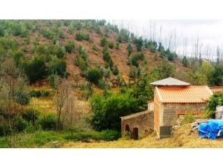 Ver Azenha, Monchique, Faro em Monchique