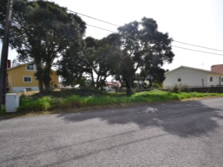 Voir Terrain, Alcobaça e Vestiaria, Leiria, Alcobaça e Vestiaria à Alcobaça