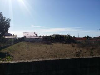 Voir Terrain, Escolas, São Bernardo, Aveiro, São Bernardo à Aveiro