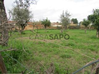 See Land, Alvega e Concavada, Abrantes, Santarém, Alvega e Concavada in Abrantes