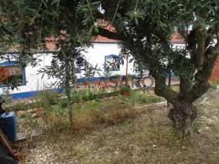 Voir Petite Ferme 4 Pièces, Santiago Maior à Alandroal