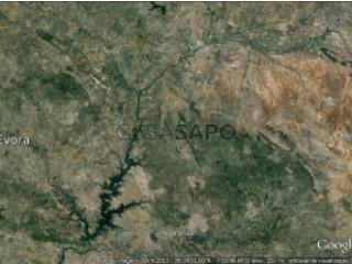 Ver Turismo Rural , Estremoz (Santa Maria e Santo André) em Estremoz