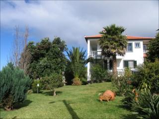 Ver Moradia T3 Com garagem, Estreito da Calheta, Calheta (Madeira), Estreito da Calheta em Calheta (Madeira)
