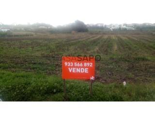 Voir Terrain Rustique, Vagos e Santo António, Aveiro, Vagos e Santo António à Vagos