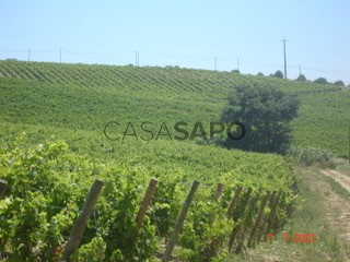 Voir Ferme agricole  à Arruda dos Vinhos
