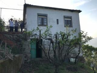 Voir Ferme, Vila Seca e Santo Adrião, Armamar, Viseu, Vila Seca e Santo Adrião à Armamar
