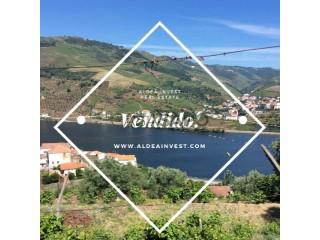 Ver Finca Con garaje, Ervedosa do Douro, São João da Pesqueira, Viseu, Ervedosa do Douro en São João da Pesqueira