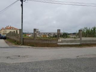 See Land, Ericeira , Mafra, Lisboa, Ericeira in Mafra