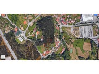 Ver Terreno , Vila Chã, Codal e Vila Cova de Perrinho em Vale de Cambra