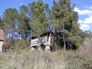 See Farm, Oliveira de Frades, Souto de Lafões e Sejães, Viseu, Oliveira de Frades, Souto de Lafões e Sejães in Oliveira de Frades