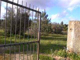 Ver Terreno, Vale de Mulatas, São Sebastião, Setúbal, São Sebastião em Setúbal